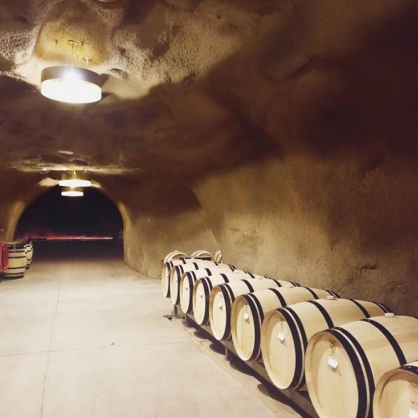 Wine-Cave1_1000x1500