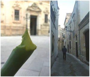 Aloe Lecce