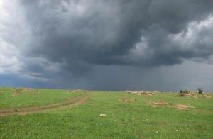 win-serengeti-storm